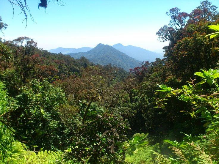 @ hot water spot, Taman Nasional Gede Pangrango, Bogor, Jawa Barat, Indonesia. #hot #water #national #park #gede #pangrango #mountain #bogor #cianjur #java #west #jawa #barat #indonesia #hiking