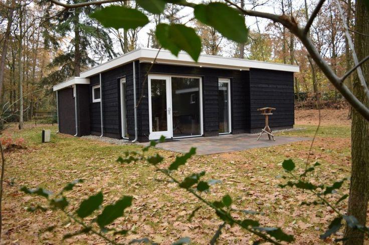 Natuurhuisje 31133 - vakantiehuis in Doldersum