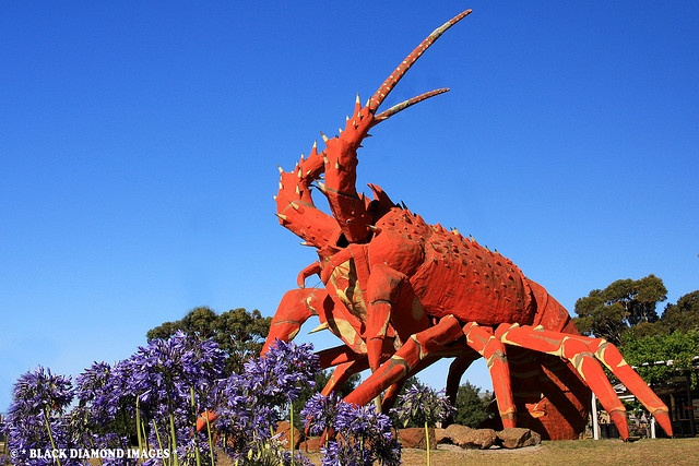 Kingston South Australia- Larry the Lobster, 17 m, steel + fibreglass, opened: 5 December 1979. Astrogeographic position for field level 4: built to attrack attention to a restaurant Larry has both coordinates in Taurus the sign of food and indicator for highly profitable places. Cancer would be the natural sign for lobsters and becauses of the red colour Aries could have been expected too.