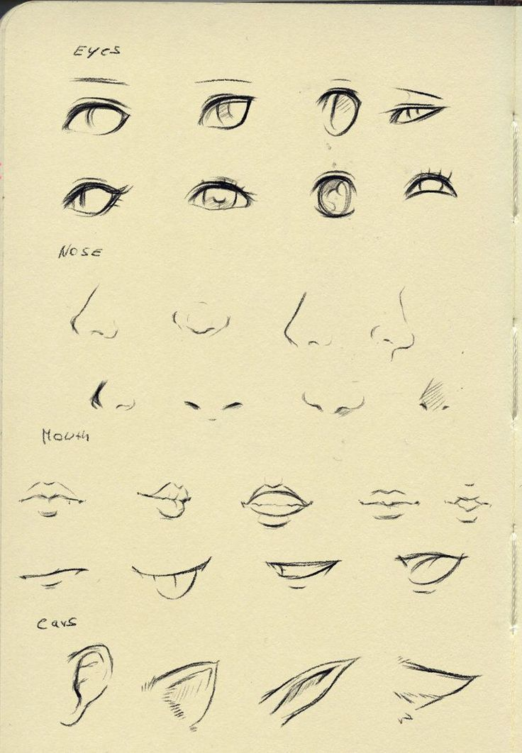 Anime Drawing Ideas Reference Eyes Nose Mouth Ear By Ryky On Anime Drawing Eyesnosemouthear Nose Drawing Anime Nose Anime Mouth Drawing