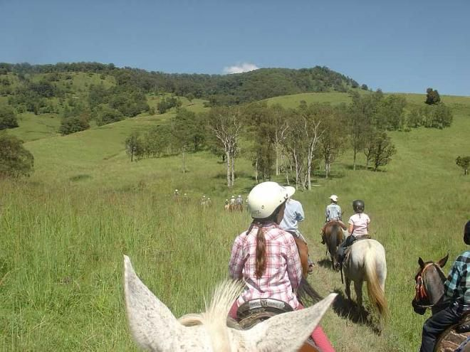 """Horse Riding - Camp Cobark """"Mansfield"""" Cottage Barrington Kids Country Holiday NSW E - jill.perram@bigpond.com https://www.facebook.com/pages/MANSFIELD-COTTAGE-BARRINGTON-Barrington-Tops-Holiday-Accommodation/341811962165"""