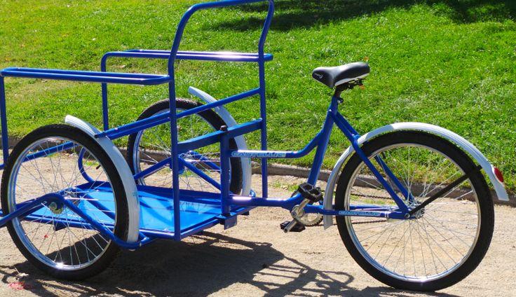 triciclo_031.jpg (850×490)