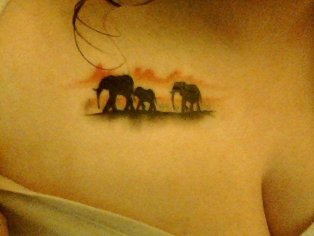 Elephants, tattoo