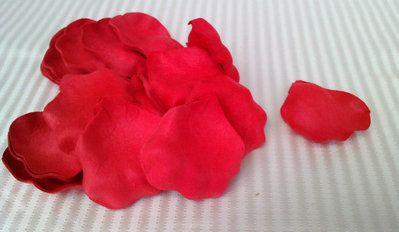 Petali di rose rosso vivo