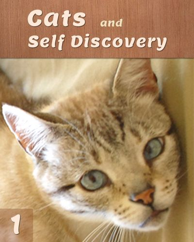 Find out How and Why One's Relationship to Cats is a Key to Self Awareness.    http://eqafe.com/p/cats-and-self-discovery-part-1