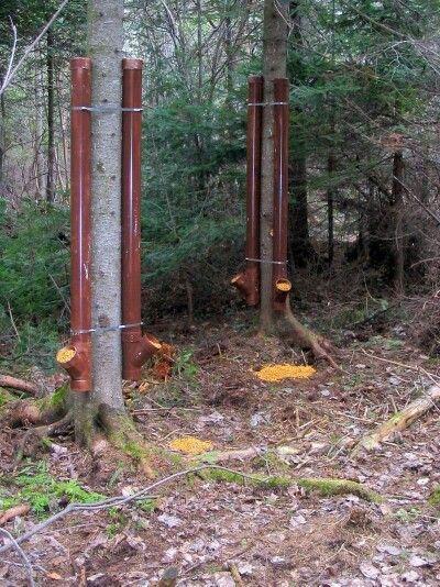 Pvc Deer Feeders