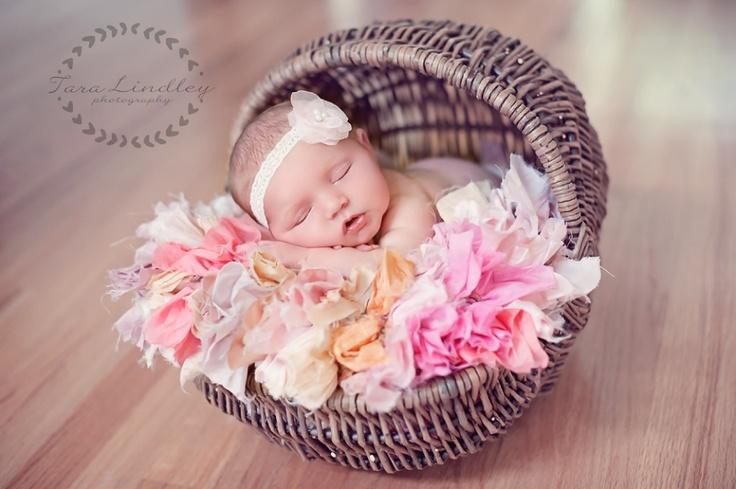 Columbia sc newborn photographer tara lindley photography