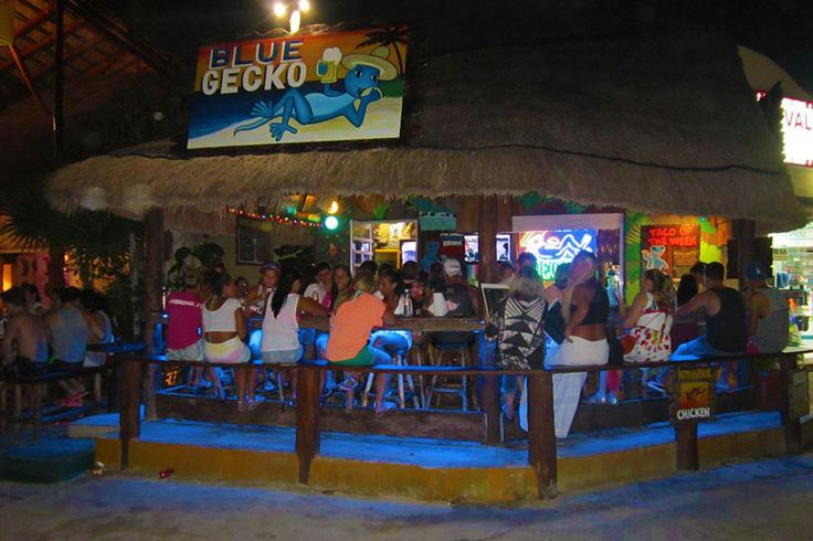 Blue Gecko Cantina: Scrumptious, Budget-Friendly Eats in Cancun's Hotel Zone: Restaurants Article by 10Best.com