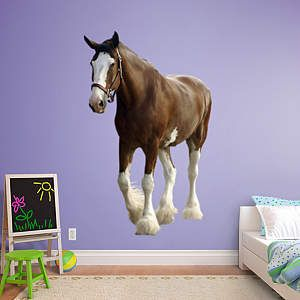 Fathead.com wall decals for kids rooms- Horse wall decal