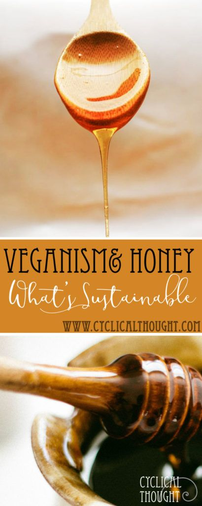 """Why I Eat Sustainable Ethical HONEY as a """"Vegan"""" – Farm Benefits"""