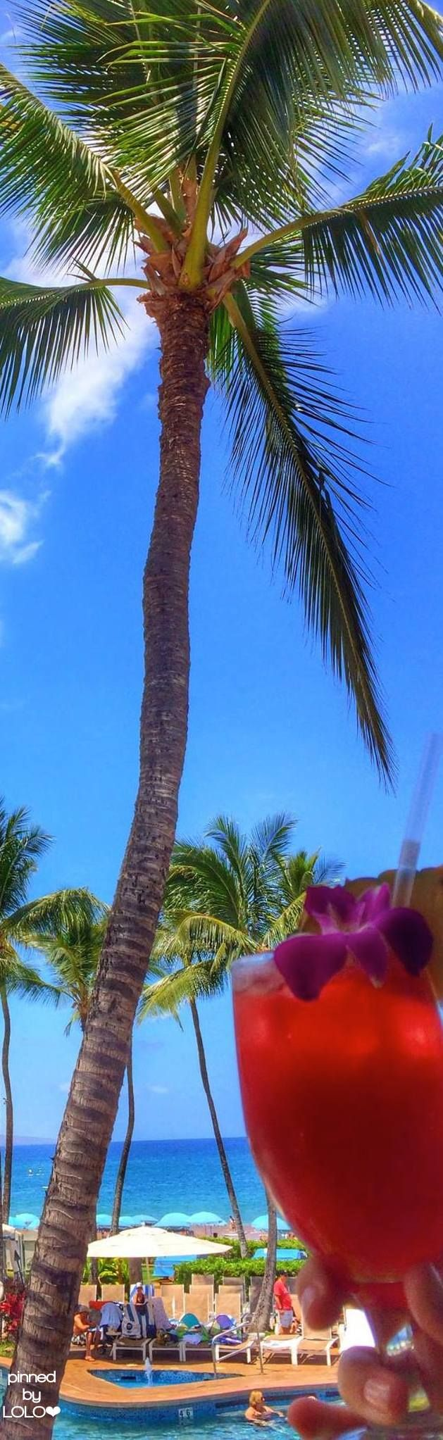Grand Wailea....Maui | LOLO❤︎