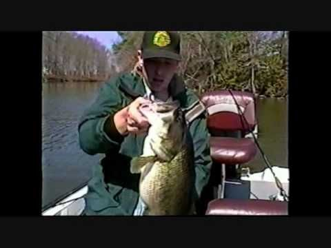 Bass fishing tips and techniques by the bass college for Bass fishing videos