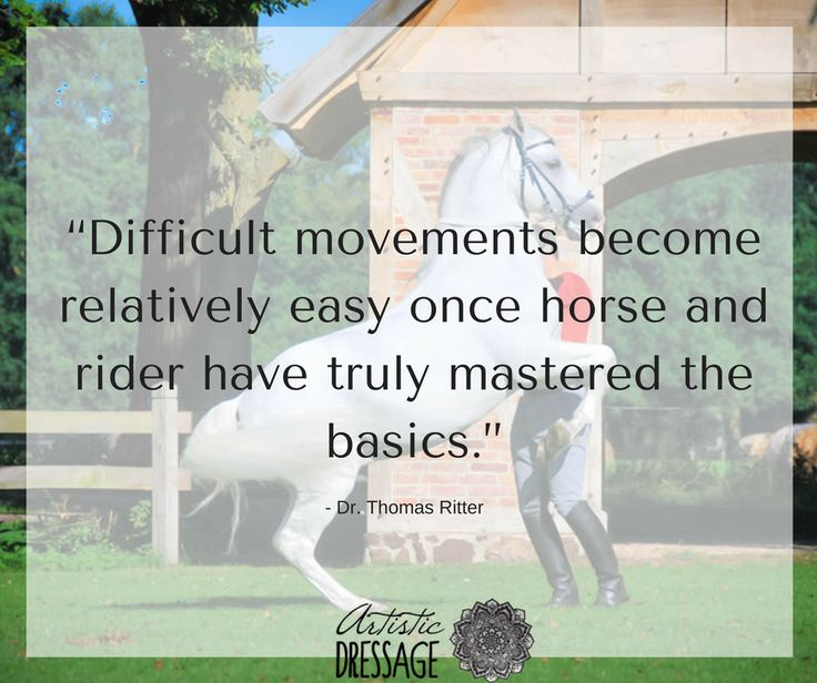 """""""Difficult movements become relatively easy once horse and rider have truly mastered the basics.""""  - Thomas Ritter  www.artisticdressage.com"""