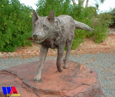 Red Dog memorial in Dampier....see the movie, learn the story. Amazing!