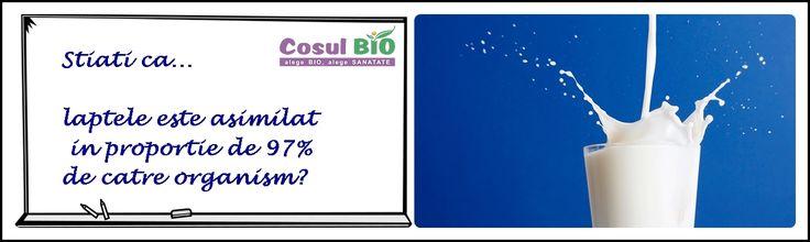 Stiati ca laptele este asimilat in proportie de 97% de catre organism ?