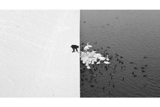 The International Fine Art Photography Competition「A Man Feeding Swans in the Snow」。ポーランドのMarcin Ryczekさんによる一枚で、人、鳥、水、そしてシチュエーションと、どれを取っても美しい一瞬を捉えている奇跡のモノクロ写真。