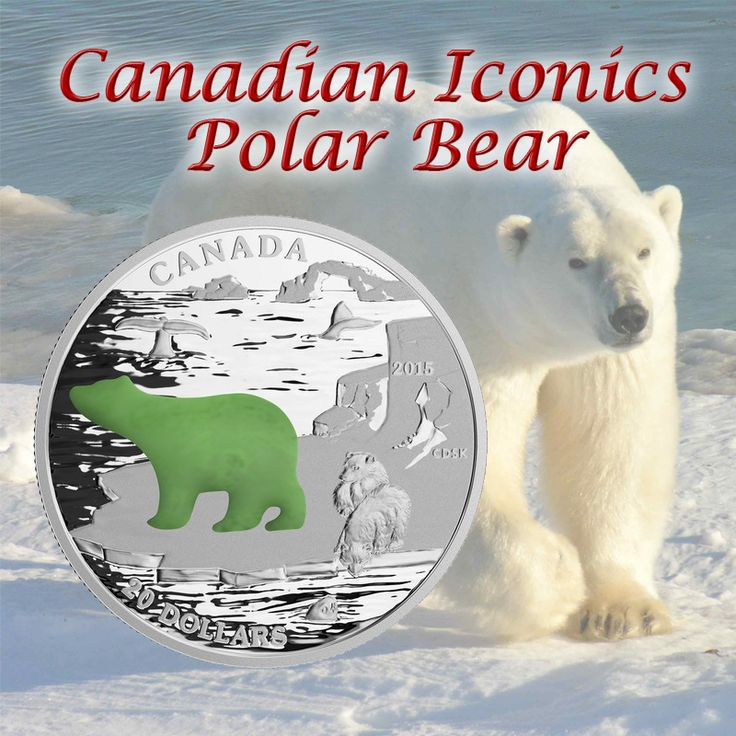 Add the Canadian Icons - Polar Bear coin to your collection! Combining tradition with modernity, the intricate engraving is complemented by a jade insert.