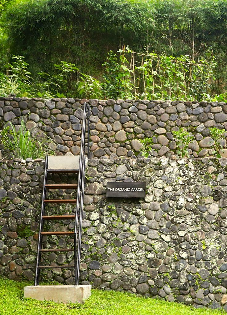 The Organic Garden at Alila Ubud - Bali