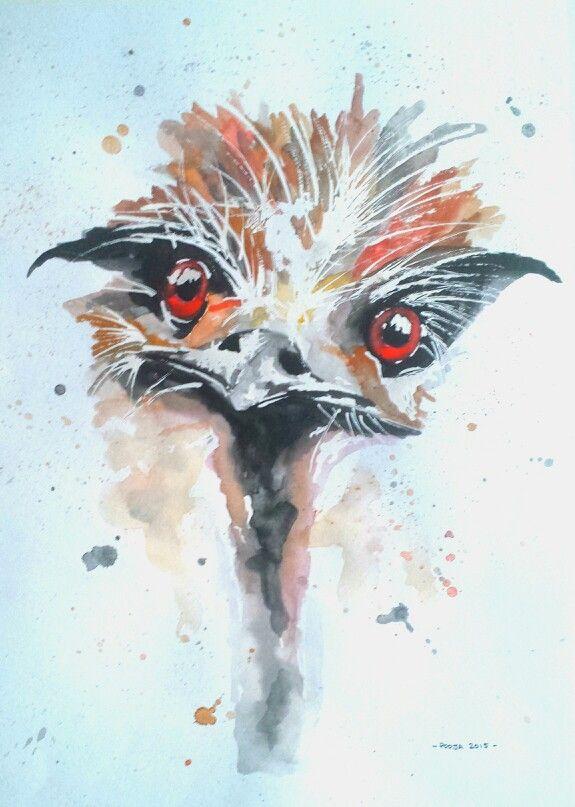 Australian Emu, watercolor