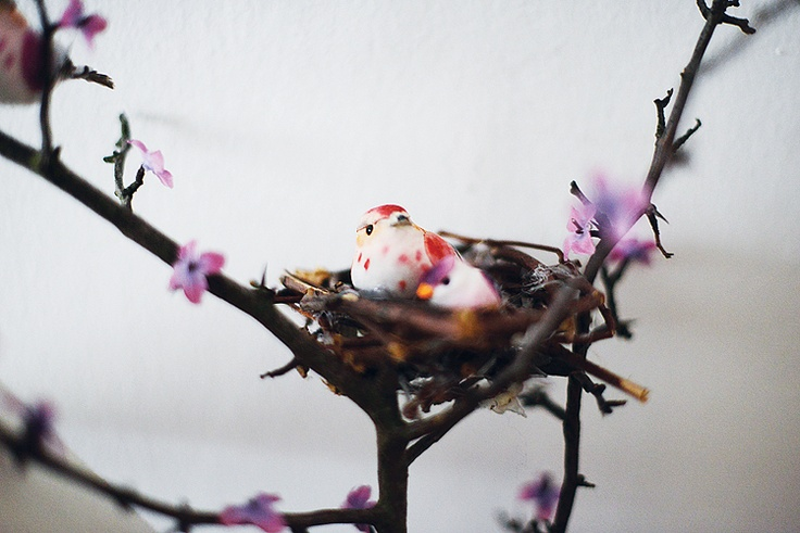 I put the artifial petals onto the branch and made a nest for the little birds