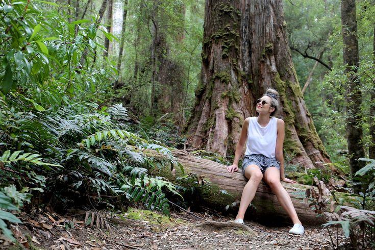 Kim Lamb, Travel Blogger, Tahune Airwalk, Hobart, Tasmania