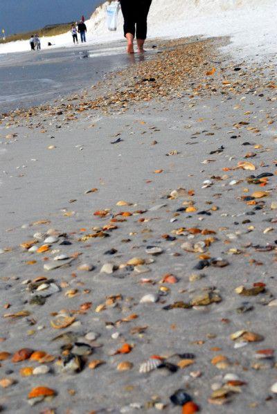 Everything under the sun in Panama City Beach, Florida