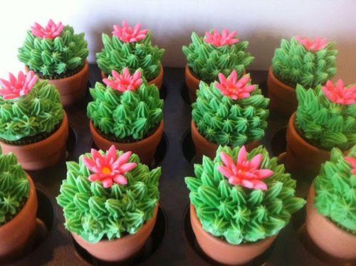 Cacti cupcakes :)