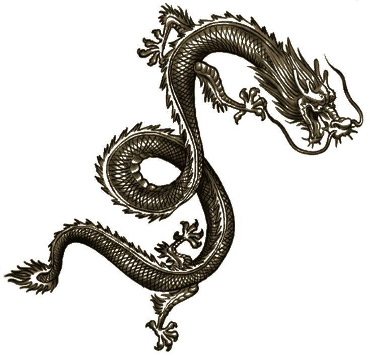 wei shen tatt chinese arts pinterest dragon. Black Bedroom Furniture Sets. Home Design Ideas