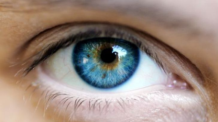 Cristalinul este lentila transparentă a ochiului care asigură vederea clară la distanță și, până la vârsta aproximativă de 40 de ani, vederea clară și la aproape, datorită unei însușiri unice, numită acomodație.