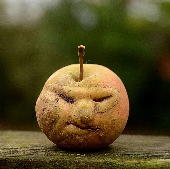 Æblegrød – tænker du måske – skal denne dag starte med en banalitet. Og nej. Det skal den ikke. Æbler er denne klodes omsorg og opmuntring til dem, der går efteråret i møde. Når man giv…