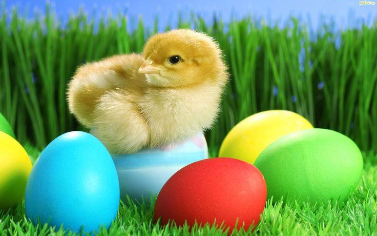 Wielkanoc | aniabeauty.blog.pl