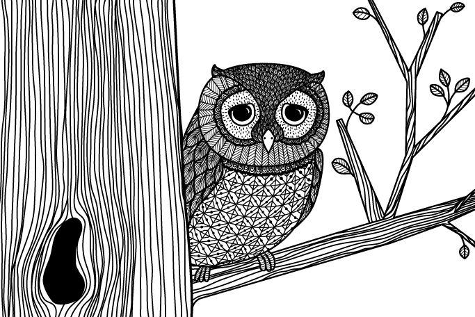 Google Image Result for http://thecarolinejohansson.com/blog/wp-content/uploads/2011/02/owl_and_tree.jpg