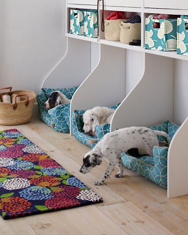 Swoon Worthy Pet Decor...multiple pet beds with pet supply organization. It's little pet lockers for your dog! Swoon Worthy Pet Decor Round-Up by Postbox Designs E-Design