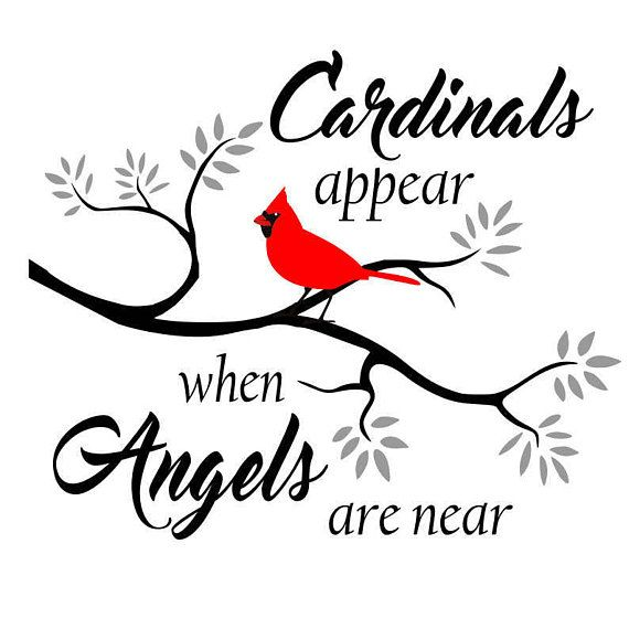 Cardinals appear when Angels are near Svg Dxf Png