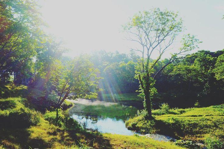 zaborin.com | posted by Winnie Ho @winniehohk