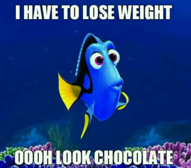 "Why am I humming ""just keep eating, just keep eating""? Damn you Dori! Damn you chocolate and your sweet deliciousness!"