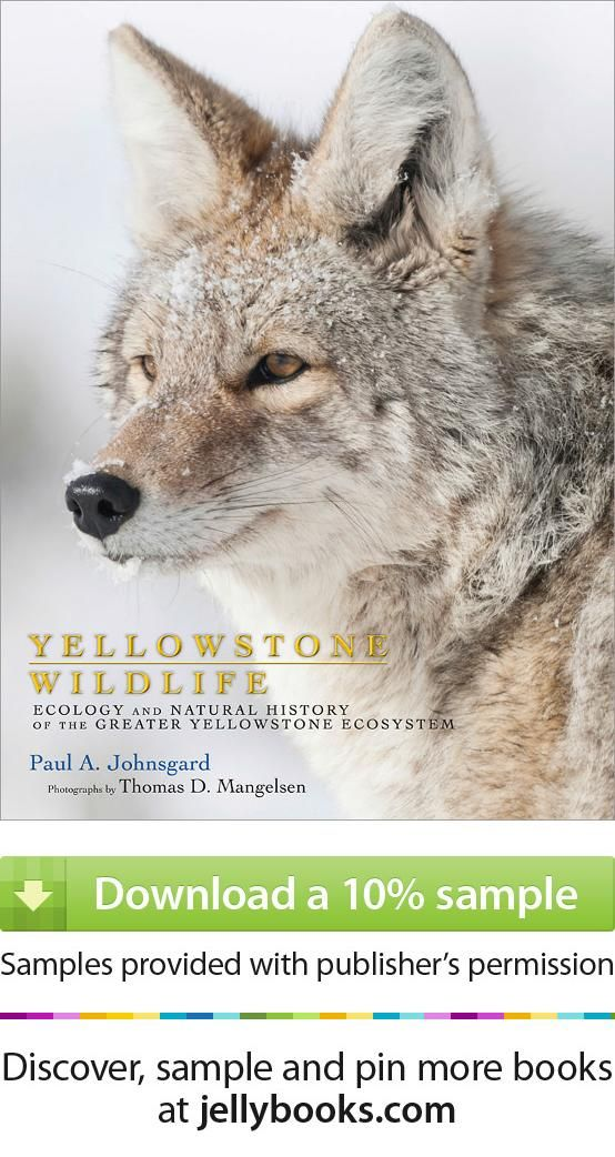 103 best free e books images on pinterest guitars kindle and e books yellowstone wildlife by paul a johnsgard download a free ebook sample and fandeluxe Gallery