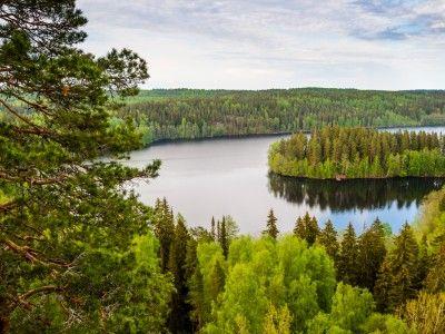 Les 188.000 lacs que compte notre pays sont si grands et occupent une superficie totale telle que la Finlande est le pays du monde à afficher la plus importante surface aquatique par rapport à ses espaces terrestres. Il faut aussi ajouter que les eaux finlandaises sont parmi les plus pures du monde.