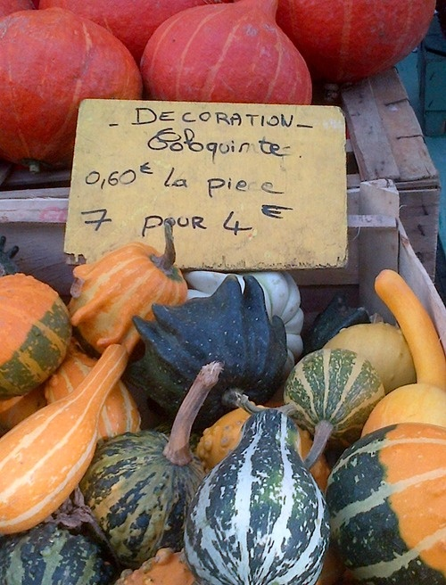 Autumnal shopping from a market in La Rochelle