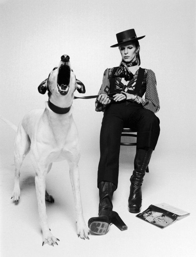 【ELLE】写真|1974年 ④|【追悼】デヴィッド・ボウイの革新的なスタイルをたどる|エル・オンライン