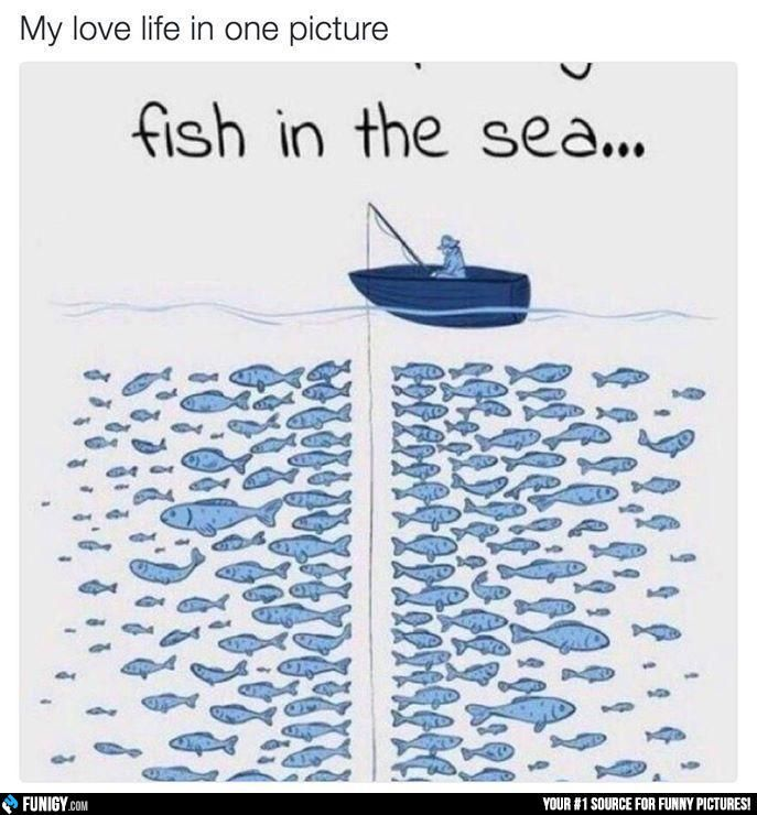 My love life in one picture (Funny Relationship Pictures) - #fish #love life #sea