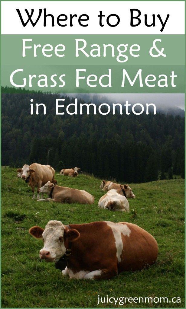 meat-in-Edmonton-juicygreenmom