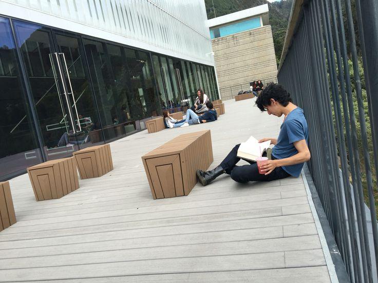 Lector en F Artes PUJ