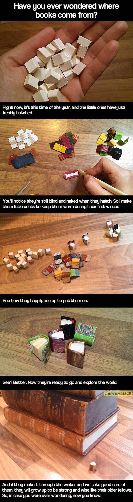 The cutest explanation of anything ever.