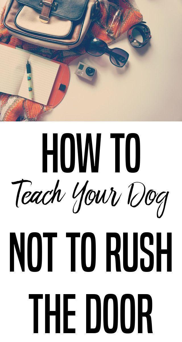 Dogs Pushydogs Dogtraining How To Stop A Pushy Dog Teaching