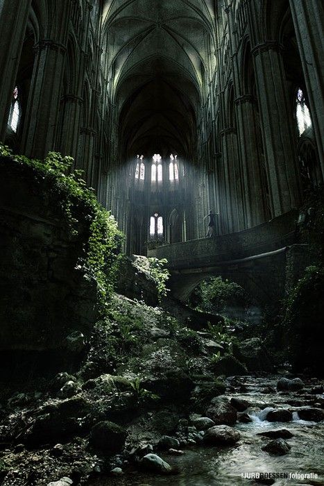 Abandoned Cathedral, Nature takes it back  