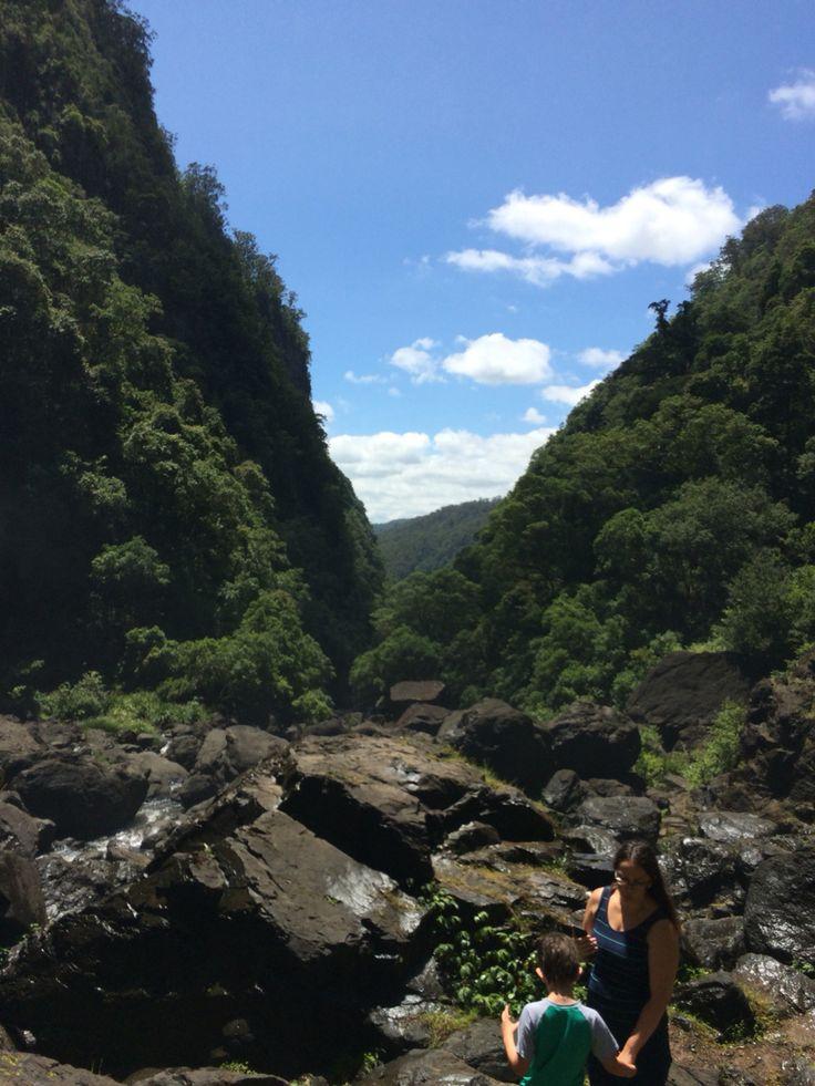 Ellenbourogh Falls in Elands NSW 10-1-2015 the bottom of the falls @susierose19
