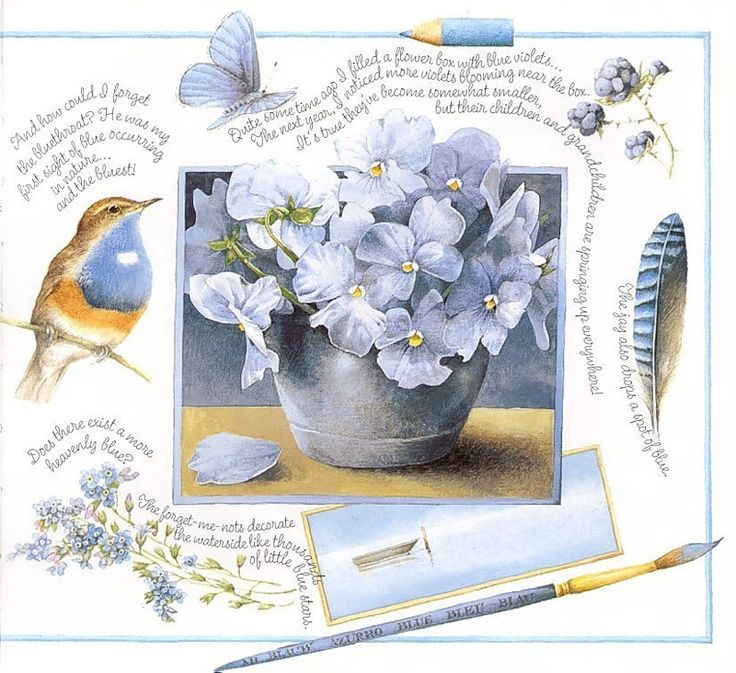 Marjolein Bastin This was a hallmark card that I always loved. My favorite color blue.