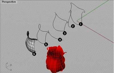 Create a Rose in Rhino 3d!    Rhino 3D Blog    Off Broadway Rhino 3d tutorial sharing    http://offbroadway.blogspot.com/2007/01/create-rose-in-rhino-3d.html