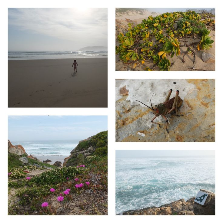 Robberg Nature Reserve, South Africa | One Footprint On The World